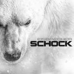 EISBRECHER Schock