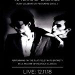 Peter Murphy (Bauhaus) am 12. November 2018 live im Mascotte/Zürich