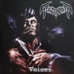 SCHIZOPHRENIA - Voices