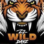 Z7 Wild Dayz 2021 - Neues Musikfestival in Pratteln